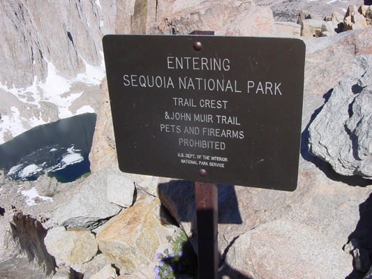 Welcome to Sequoia National Park.